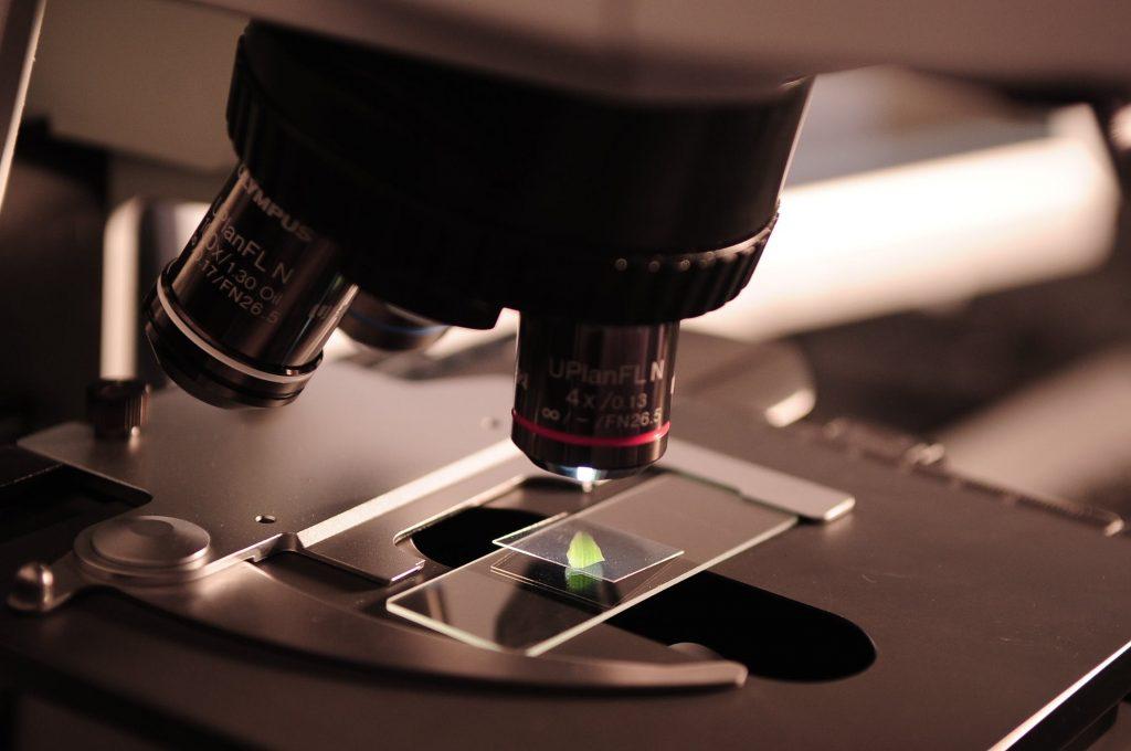 Bactérias vaginais podem desencadear infecção urinária recorrentes